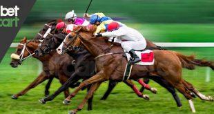 شرط بندی در اسب سواری