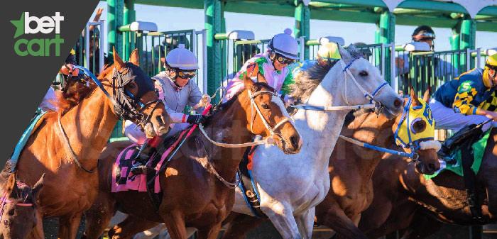 Forecast در شرط بندی اسب سواری